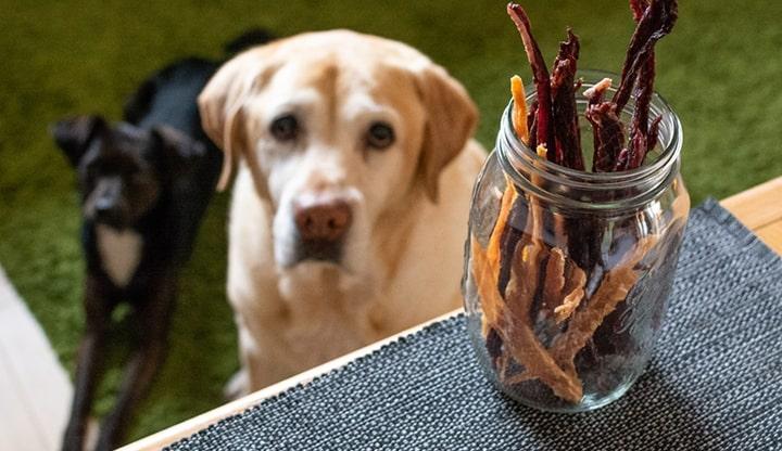 essiccare ricette ingredienti essiccatori tauro prodotti pet food