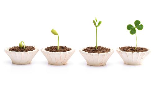 valori crescita essiccatori progettazione tauro made in italy